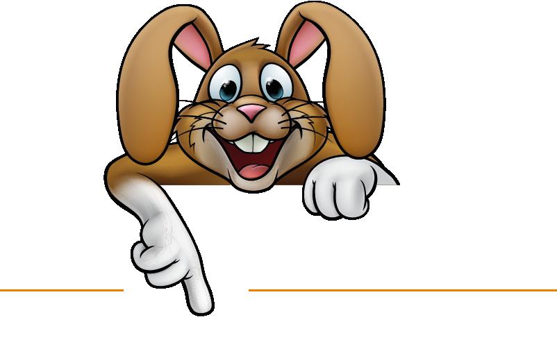 Der Glashase - Ihr Autoglaser in Bad Doberan